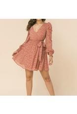 Tie Detail Leopard Dress - Mauve