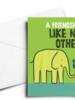 verdigris FRIENDSHIP CARD: A FRIENDSHIP LIKE NO OTHER