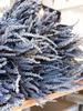 verdigris Dried French Lavender Bundles