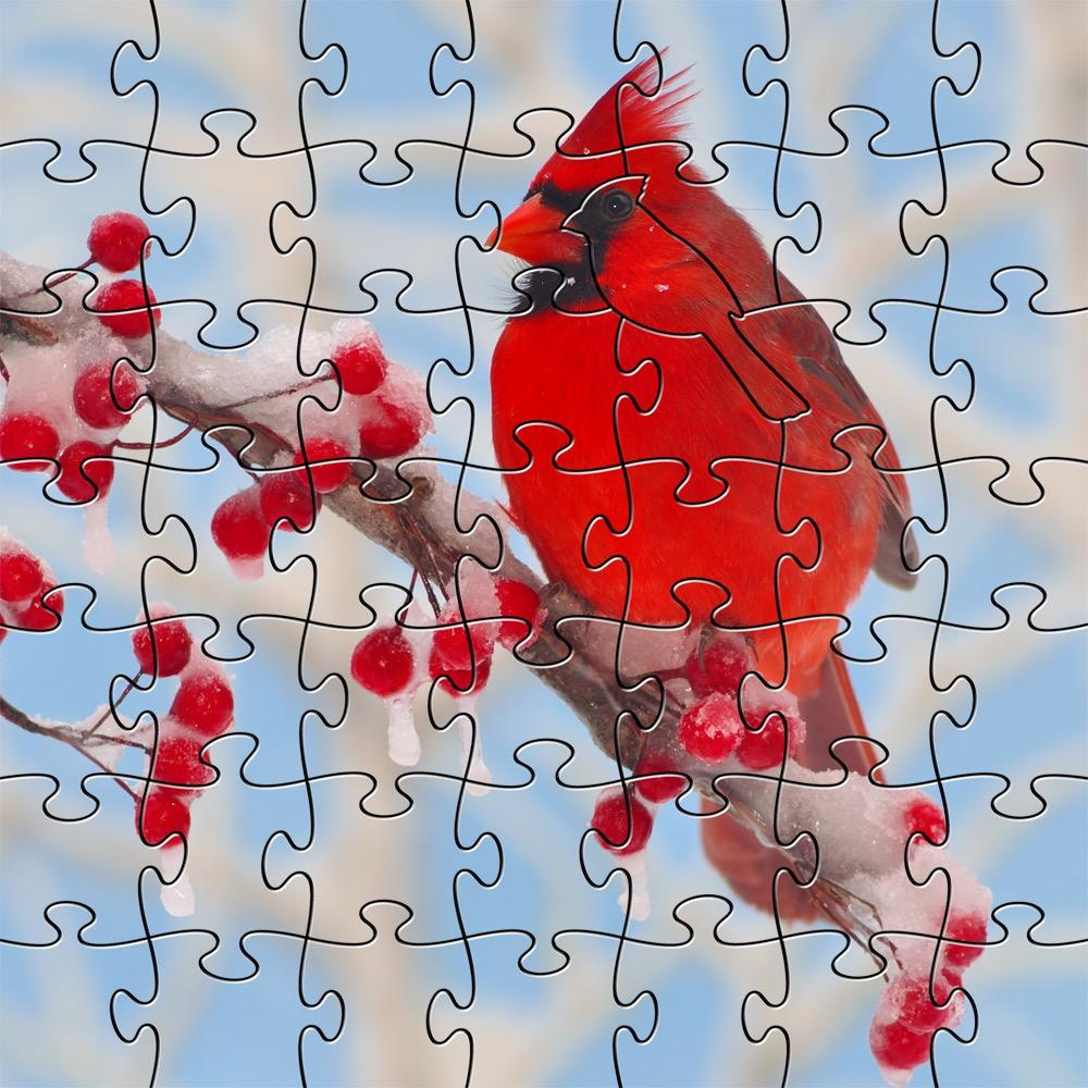 Rare Earth Gallery Winter Cardinal (Sm, 126 Pieces, Artisanal Wooden Jigsaw Puzzle)