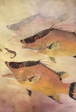 Ken Dara Hog Snapper (Gyotaku Giclee, 20x30, Mat, Frame, Signed)