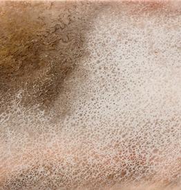 Sandra Stroot Sandstone (Fluid Acrylic, 10x20)