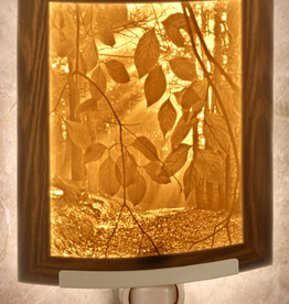 Rare Earth Gallery SECRET PATH (Lithophane Nightlight)