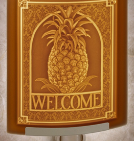 Rare Earth Gallery WELCOME (Lithophane Nightlight)