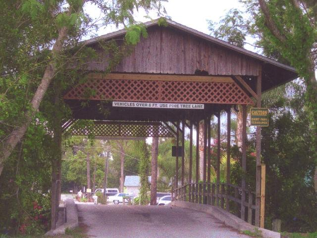 Ruthann Hewson Floridian Covered Bridge (Print, Matted, 11x14)
