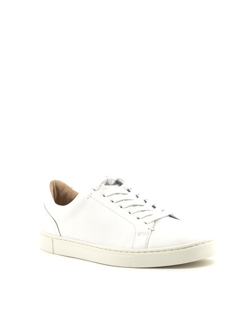 Frye — Ivy Low Lace Sneaker in White