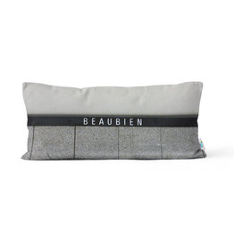 Pillow - Beaubien / Rosemont stations
