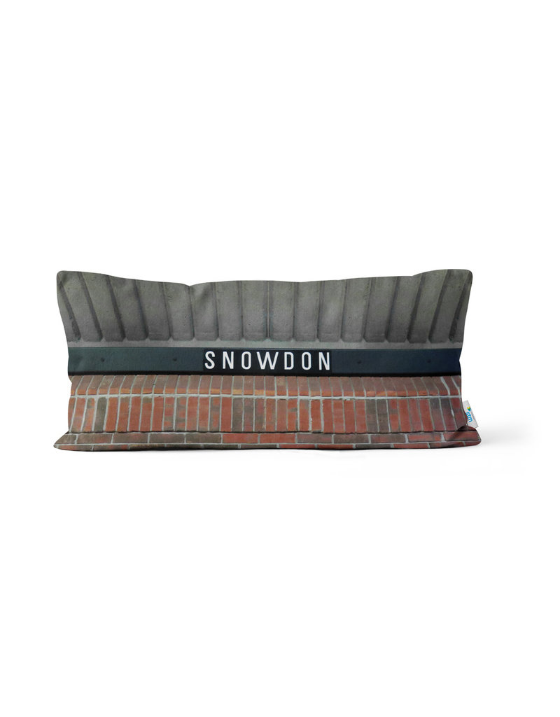 "COUSSIN - Station Snowdon   10"" x 20"""