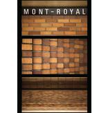 Carte postale - Mont-Royal (Jesse Riviere)