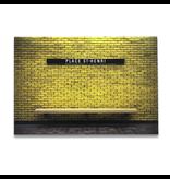 Aluminum frame - Jesse Riviere - Place-ST-Henri