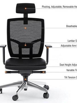 BDI Ergonomic Leather Task Chair with Polished Base, Black