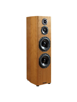 Bryston Loudspeakers Active Middle T
