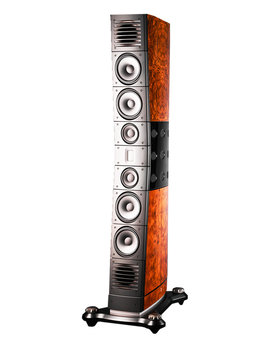 Raidho Acoustics D 5.1