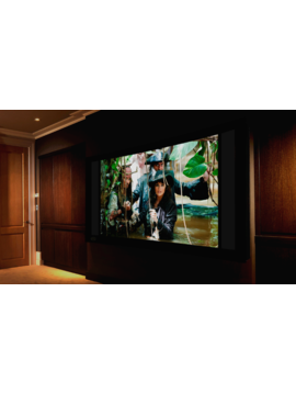 Seymour & Screen Excellence Absolute Screens ( Curved Constant Height )