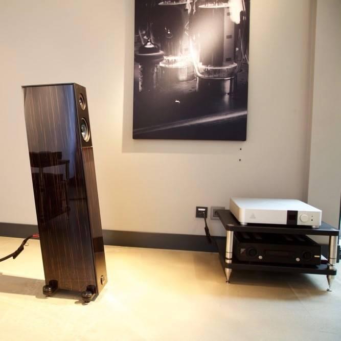 Audio Physic Avanti in Premium Finishes