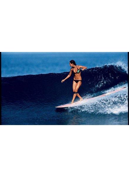 RENTAL SURF BOARD