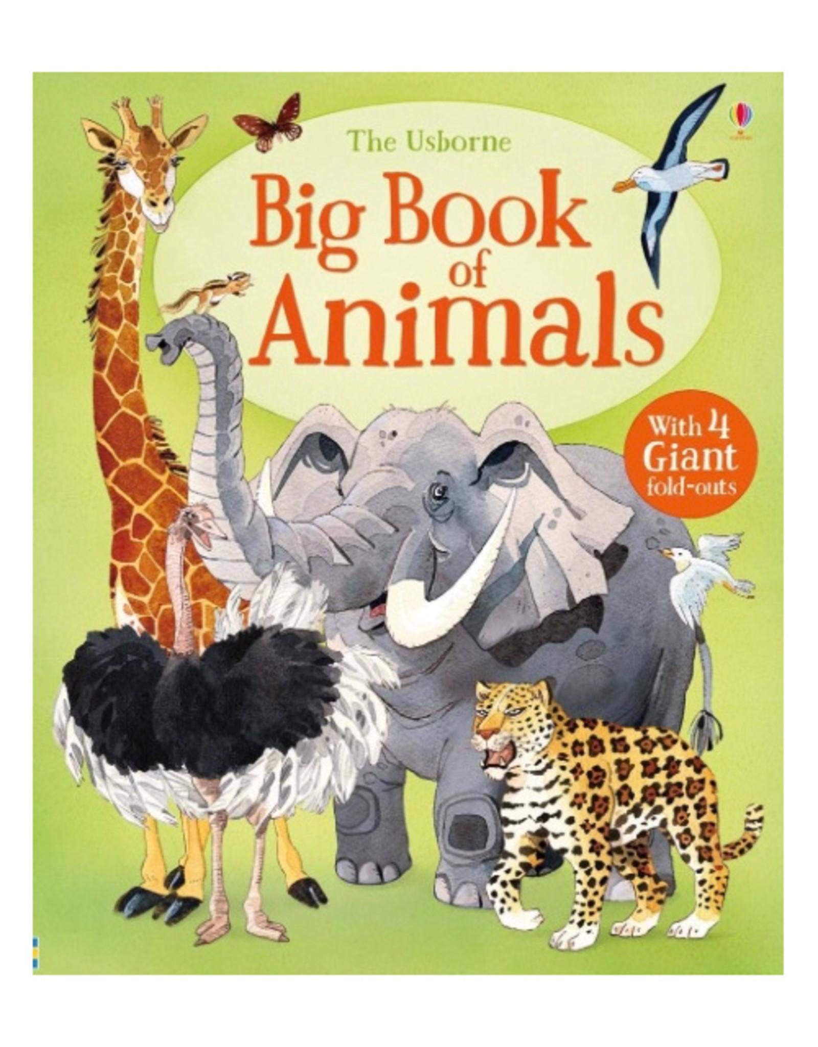 Usborne Big Book