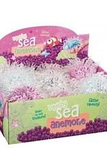 Squishy Sea Anemone