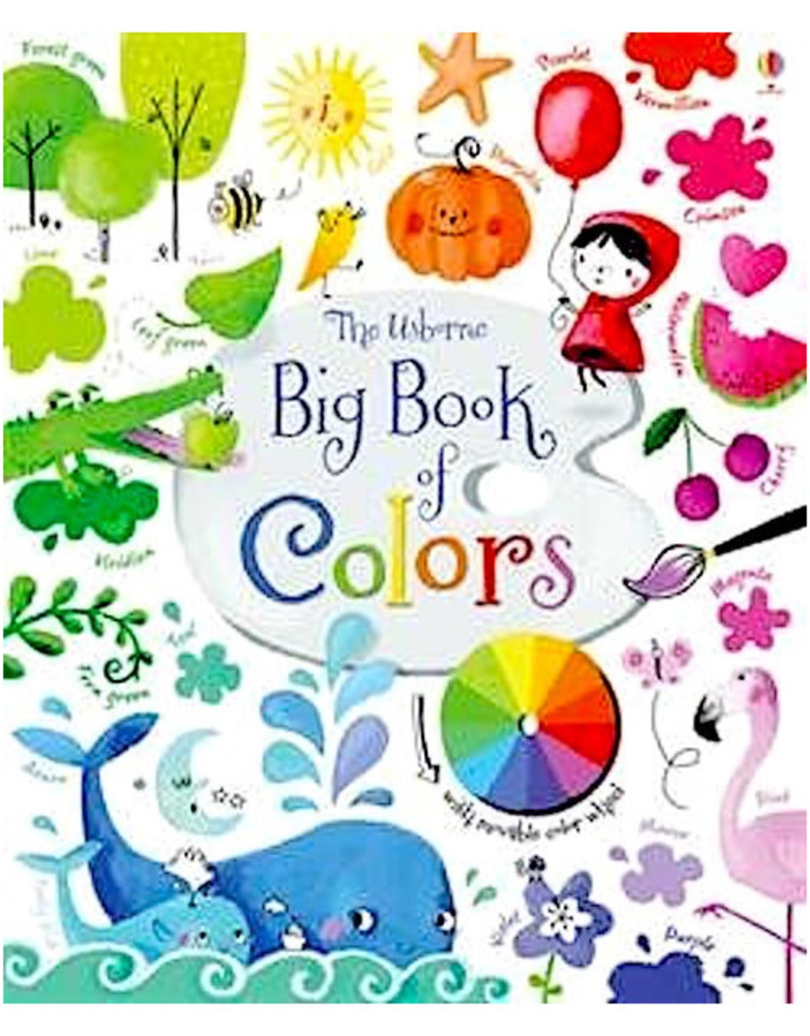 Usborne Big Book of Colors