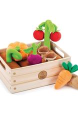 Educational Insights Vegetable Garden