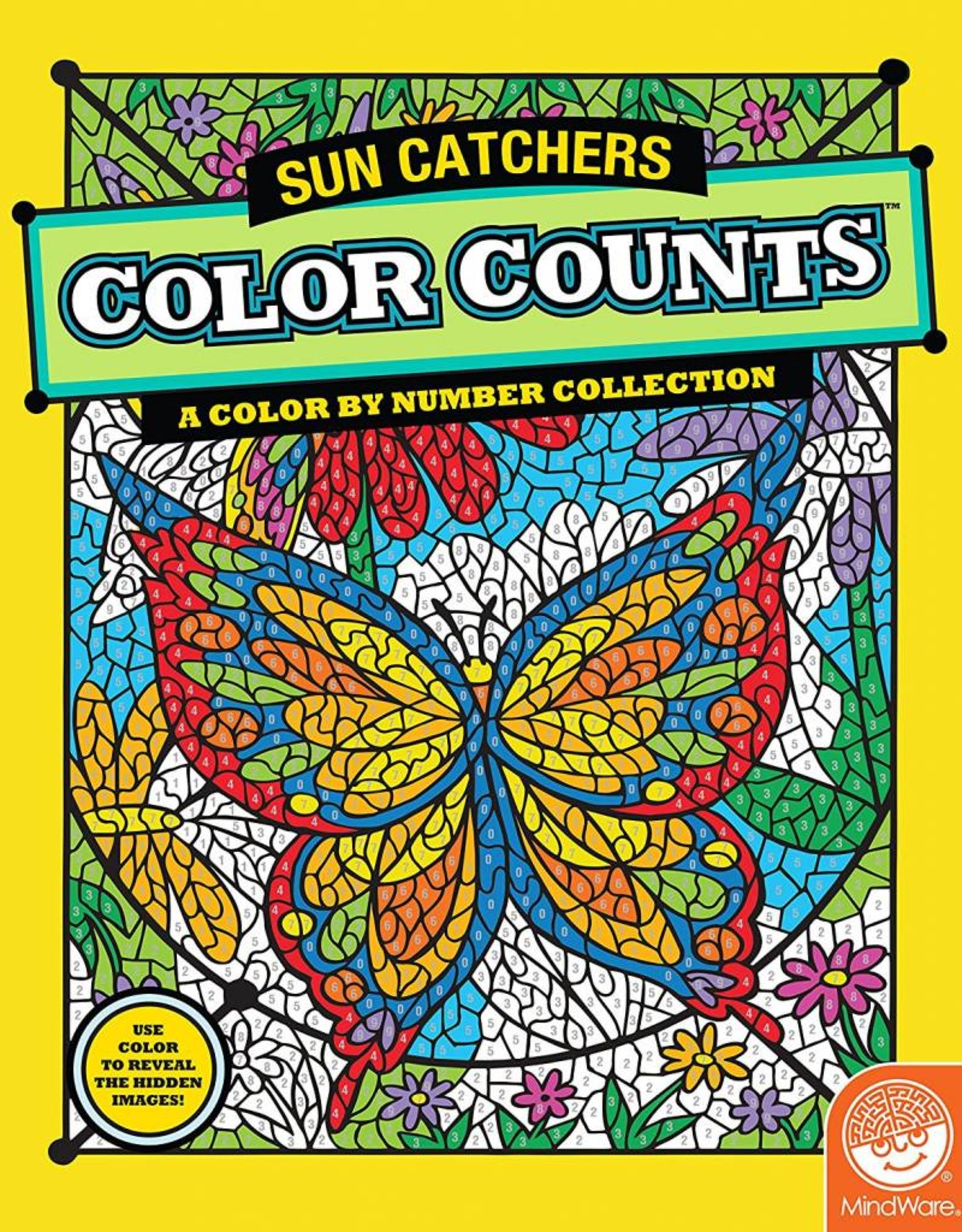 Mindware COLOR COUNTS: SUN CATCHERS