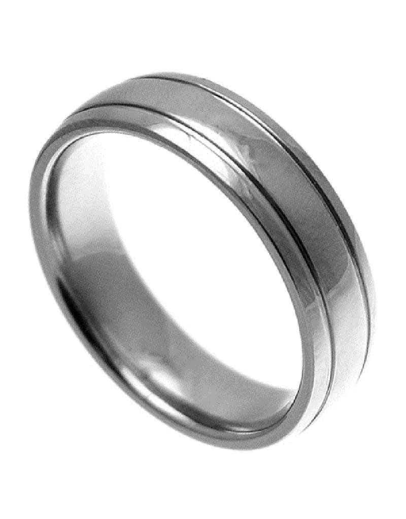 Men's 2-Line Titanium Band Ring