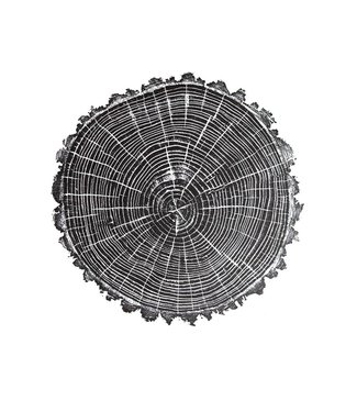 HVRNT American Elm Woodcut Print - White Paper