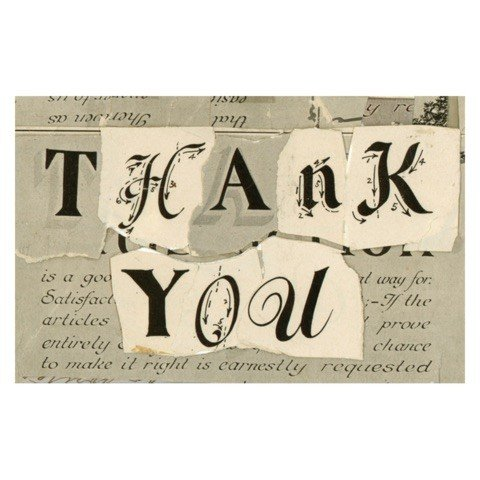 JOHN DERIAN John Derian Thank You Postcard