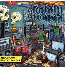 Slightly Stoopid - Meanwhile... Back In The Lab