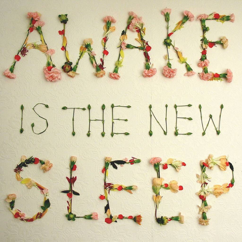 Ben Lee - Awake Is The New Sleep (10th Anniversary)(Black Friday Exclusive, 2LP, 180 Gram, Includes Download)