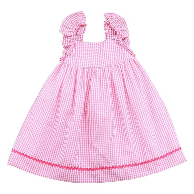Busy Bees Busy Bees Sawyer Angel Wing Dress Pink Check Seersucker