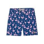 Tom and Teddy Swim Trunk Flamingo