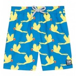 Tom and Teddy Swim Trunk Parrots