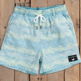 Southern Marsh Shoals Seawash Swim Trunk- Blue & Lime