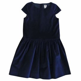 Busy Bees Alexa Drop Waist Party Dress