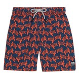 Tom and Teddy Mens Swim Trunks- 4 Colors Available