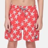Swim Trunk Starfish