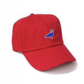 Lil Ducklings Cotton Logo Hat