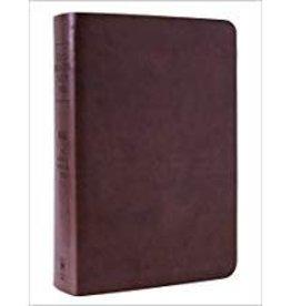 NASB Inductive Bible - Milano Brown 7302