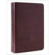 NASB Inductive Bible - Milano 7302