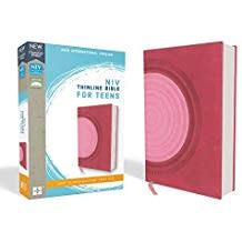 NIV Thinline Bible for Teens 8730