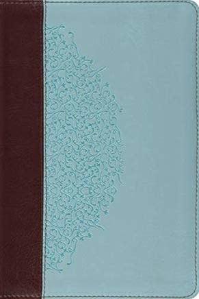 ESV Study Bible - Ivy Design 1569