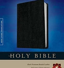 NLT Slimline Center Column Referene Bible 1083