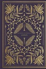 ESV Illuminated Scripture Journal:  John  4857