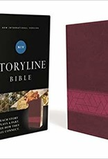 NIV Storyline Bible - Pink 0220