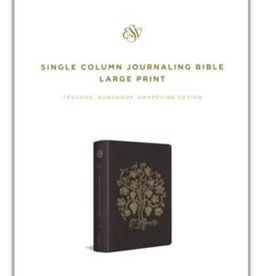 ESV Single Column Journaling Bible 4758