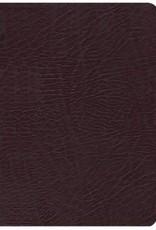 NIV Life Application Study Bible, burgundy  2751