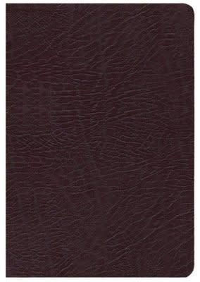 NIV Life Application Study Bible burgundy 2768