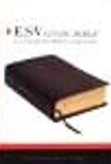 ESV Study Bible 2453