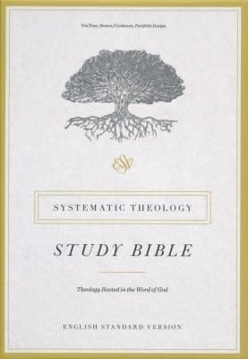 ESV Systematic Theology Study Bible, brown 3387